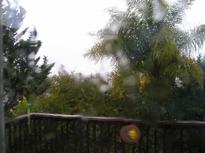 rain 2008